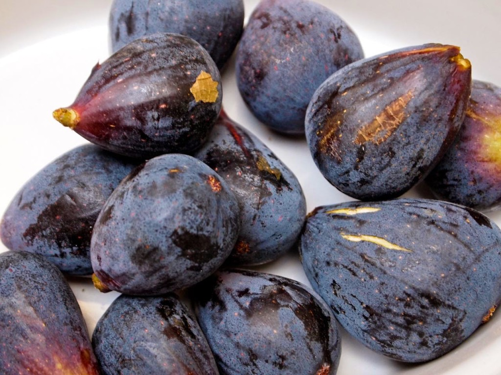 The bounty of our fig picking adventure in Lourmarin