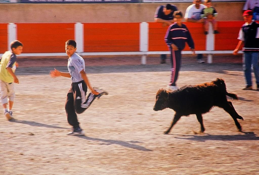 bullfight-7.jpg