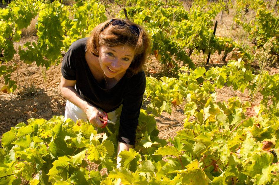 pastras_wine-5372
